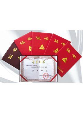 天津市示范单位荣誉证书
